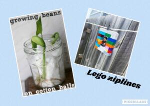 Growing Beans & Lego Zip Line Fun